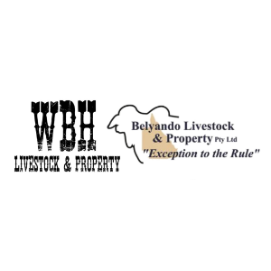 Belyando Livestock & Property Pty Ltd - Alpha